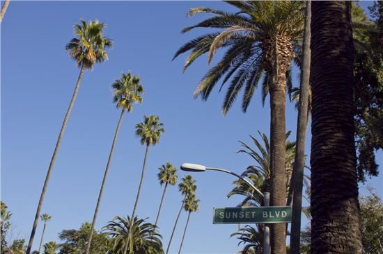 23 Reasons Why Southern California Is Perhaps the Best Place to Live