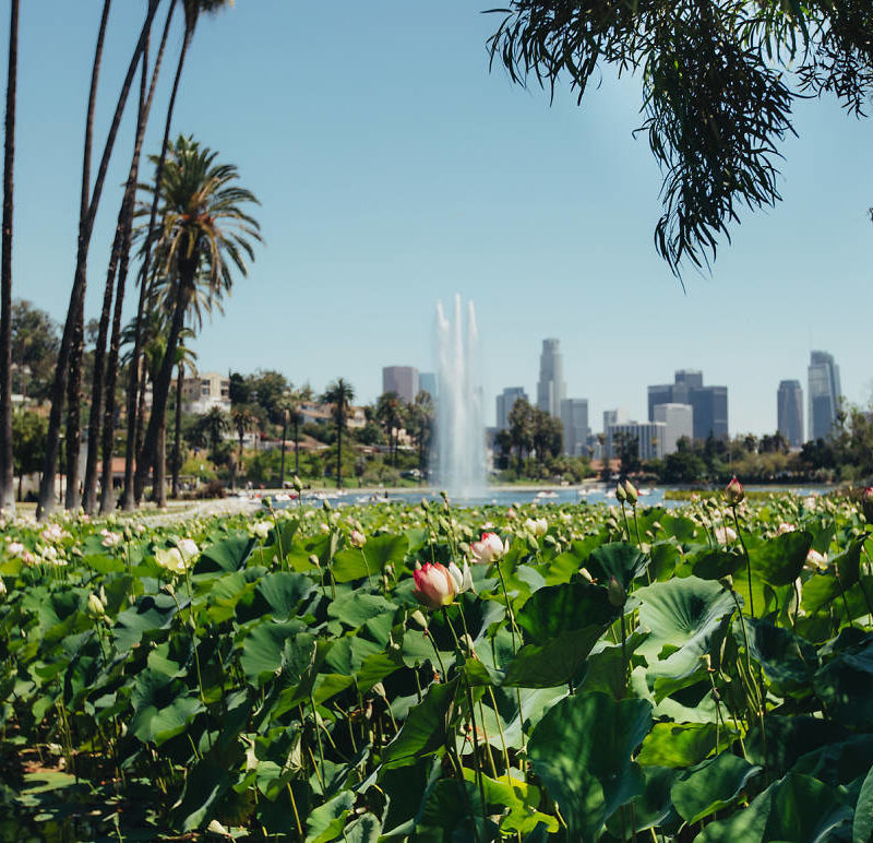 24 free things to do in Los Angeles this July 2019